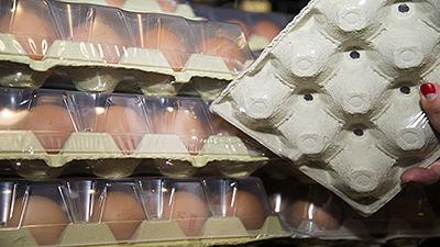 Boîtes à œufs