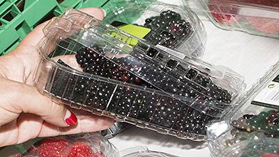 Barquettes charnière fruits et légumes