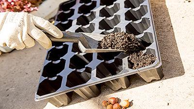 Bacs à semis en polystyrène rigide noir